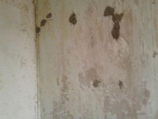 Vinde apartament cu 2 camere fără reparație dar se poate de facut