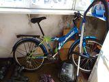 Обменяю велосипед на грушу