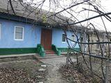 Продается дом 20 соток, в центре села Кошница.