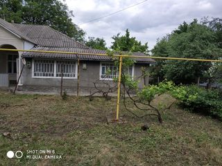 Продается дом в Бричанах