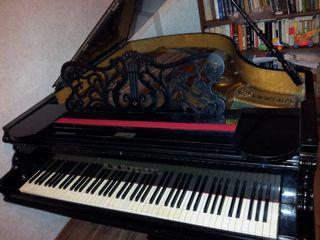 Acordor, настройщик Chișinău !!!Repararea, acordarea instrumentelor muzicale pian, acordeon!