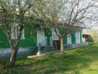 Se vinde casa in Pelinia cu 2 beciuri, garaj, fintina in ograda.  Pret negociabil