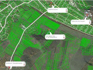 Lot de teren agricol linga satul Suruceni