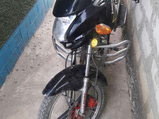 Viper nx150E