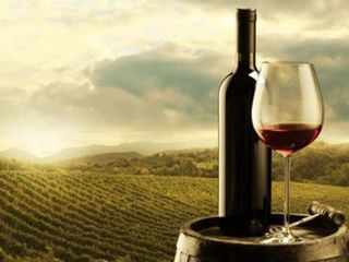 Vind vin foarte bun din poama Moldova.