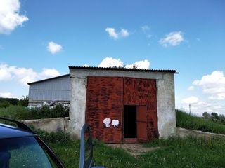 Продается складское помещение бывшее овощехранилище 812 кв.м. на поле при въезде в город Рышканы. Те