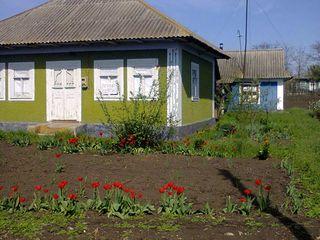Urgent vindem casa in Chetrosu r. Drochia!