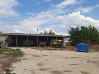 Сдаётса в аренду учясток земли с строительством  на долгое время в хынчештах рядом с магазинам кск.