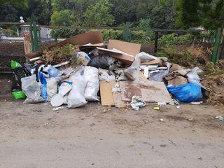 Мы избавим вас от мусора. Evacuam orce tip de Gunoi.