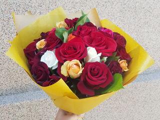 101 trandafiri la doar 500 lei