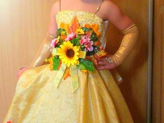 Карнавальные костюмы  и платья на прокат!