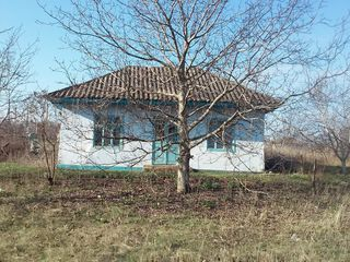 Продам дом + 30 соток земли. Срочно!!!
