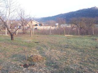 Lot de construcţii tip vilă ,  Făureşti - Cricova