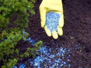 Бессарабка-минеральные удобрения