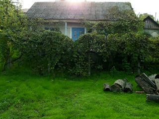 Or Hincesti, zona centru, zona linistita, ecologic curata, se vinde casa batrineasca teren 0,0743ha