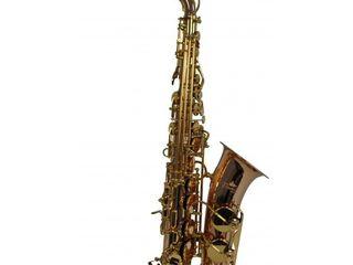 Saxofon Flame Pro SP-1012 RG. Livrare în toată Moldova. Plata la primire.