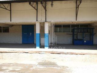 Depozit - 200 m2, Petricani