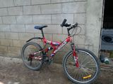 biciclata  stare bunisoara