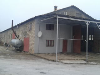 Продам здание с прилегающей землёй 1 га