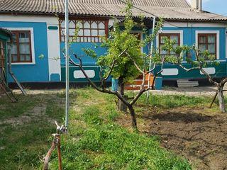 Casa de locuit sau vila
