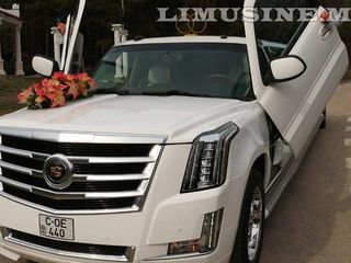 Лимузины: Infinity, Cadillac, Chrysler, Hummer, Lincoln ...
