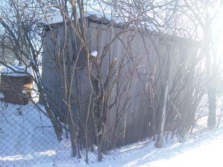 Дача -морской контейнер на садовом участке