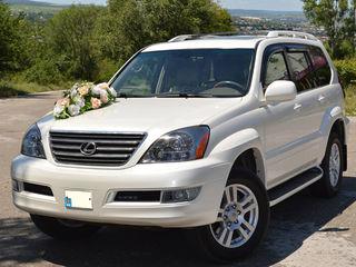 Lexus GX 470 Транспорт для торжеств Transport pentru ceremonie