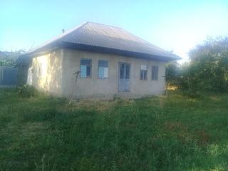 Casa regiunea albinuta Singerei