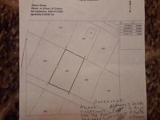 Se vinde teren pentru constructie in sectorul Nistreana