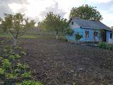 casa de locuit la18 km de la Chisinau, situat in centrul satului.apa,gaz,electricitate,gradina,beci
