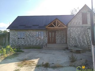 1 эт.дом 100 м2 и магазин 90 м2 на 14 сотках, в сел.Оланешты ,  р-н Штефан Водэ, 40 км. от Каушан