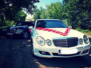 Automobile in arenda pentru ceremonii cu sau fara sofer personal !