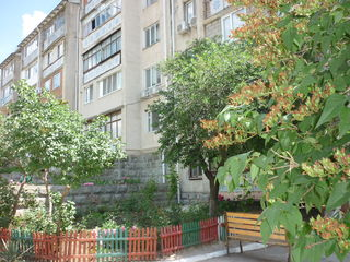 2-комнатная квартира  50 кв.м.