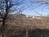 Se vinde teren de fazenda langa fabrica de carton
