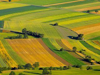 Vând sau schimb terenuri agricole