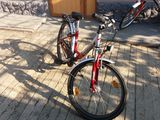 велосипед Pegasus