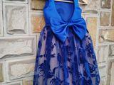 Rochița albastra