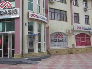 Сдается в аренду коммерческое помещение moldasig