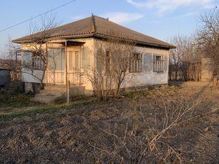 Vind casa in satul Glinjeni r.Falesti