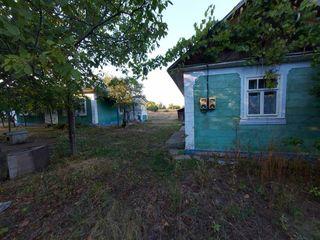 Продам дом в селе Липник