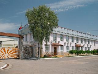 Călătorii și degustații la fabrica de vinuri Vinia Traian