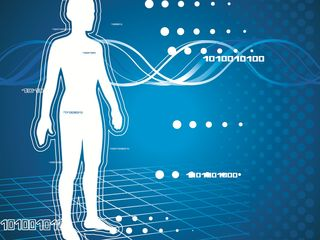 Новейшая диагностика Vector Expert. Биорезонансное исследование организма.