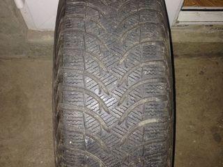 Michelin A/F 2011