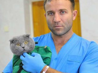 Medic Veterinar .la Chișinău . (Servicii la domiciliu+ Cabinet veterinar) 24/7/365