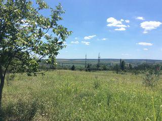 Три гектара земли в Оргееве