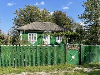 Casa in Alexeevca