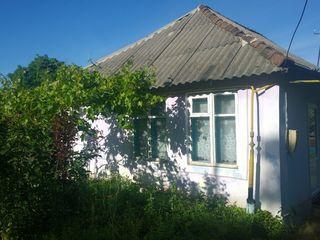 Продается дом в Максимовке с участком в 23 ара
