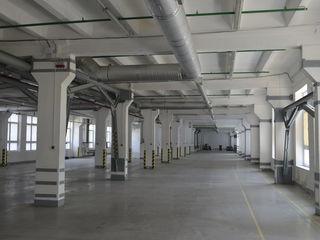 Spre chirie depozit de la 1250 m2 la 7500 m2 pentu producere, hală, call centru, showroom