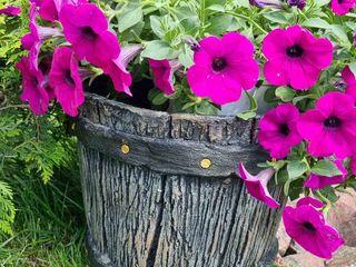 Vazon decorativ