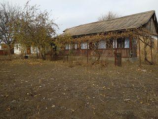 2 участка по 8 соток со старым домом. 400 евро/сотка